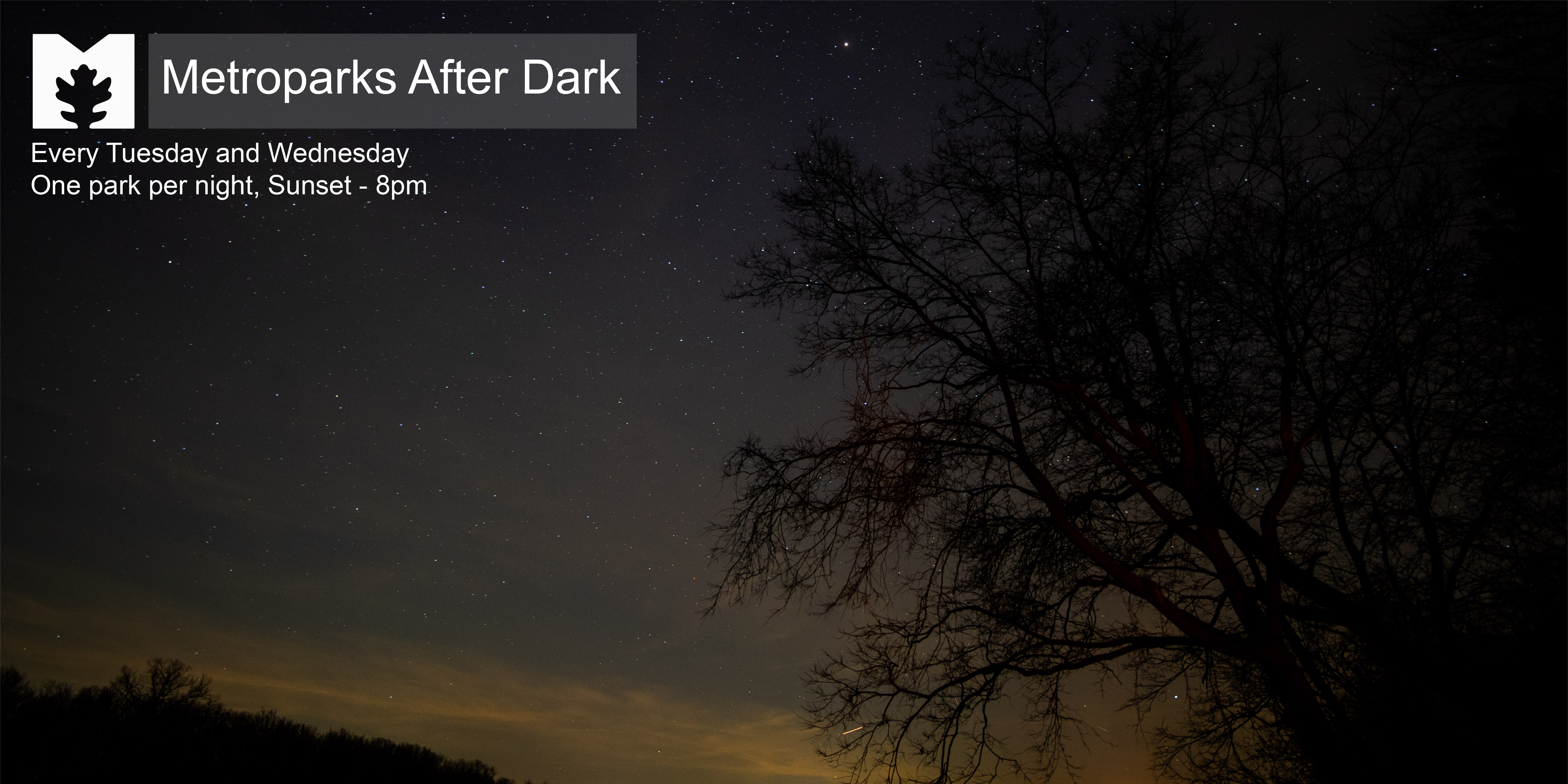 after dark web graphics 1400 x 700-03.jpg (1)